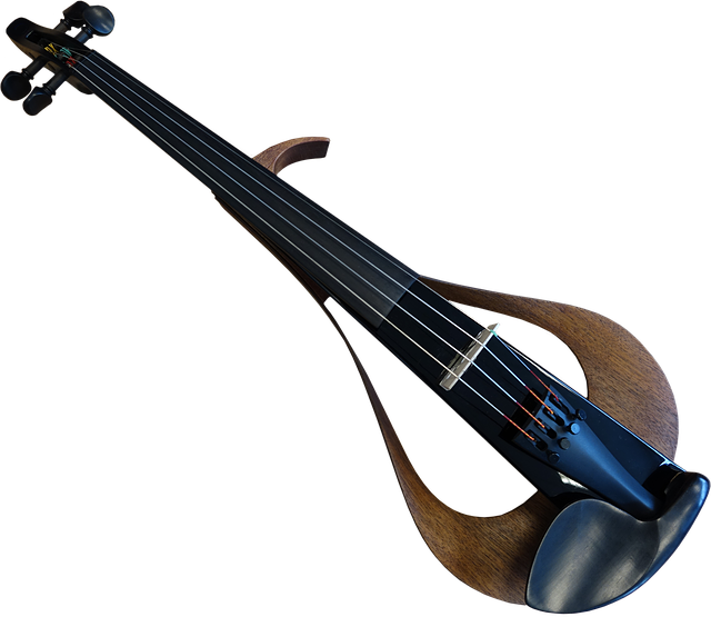 E Violin, Instrument, Music, Rock Music