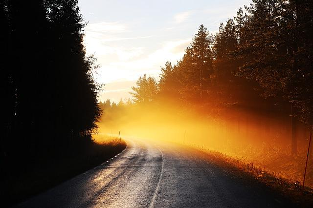 Road, Mist, Sunrise, Early Morning