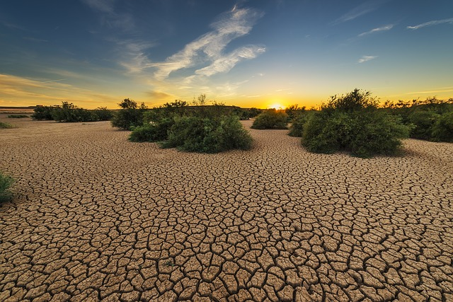 Drought, Dehydrated, Clay Floor, Earth, Cracked, Cracks