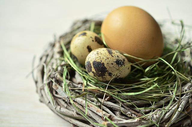 Egg, Nest, Easter, Easter Nest, Easter Decoration