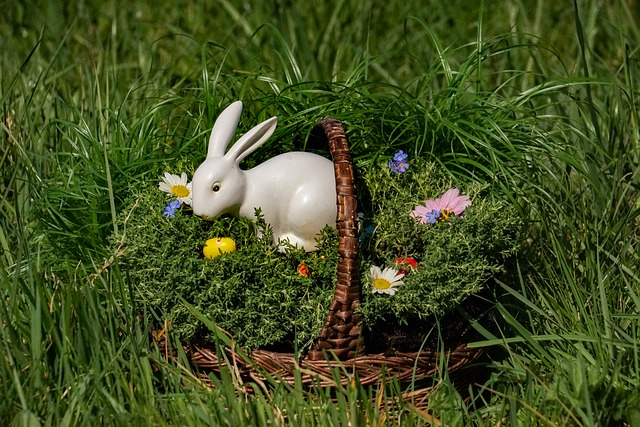 Osterkorb, Easter Bunny, Easter Eggs, Easter, Flower