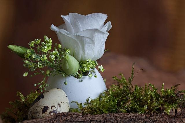 Easter, Plant, Flower