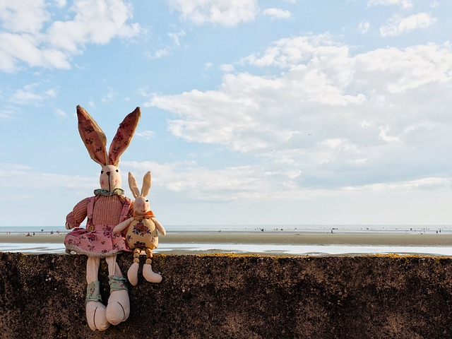 Rabbits, Clouds, Wall, Beach, Easter, Nature, Bunny