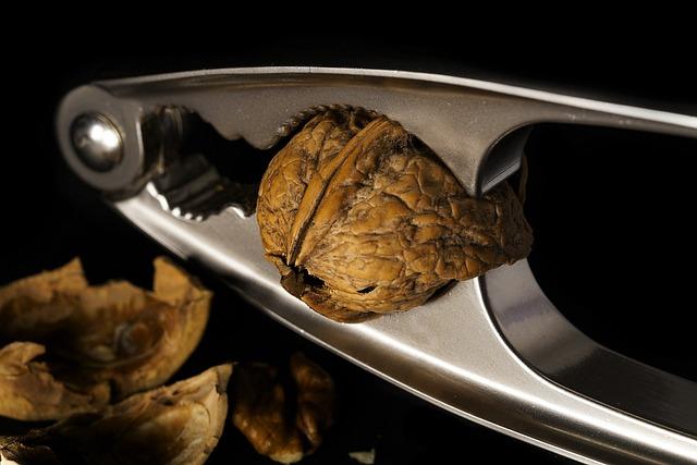 Food, Walnut, Tree Nut, Eat, Nuts, Healthy, Nutrition