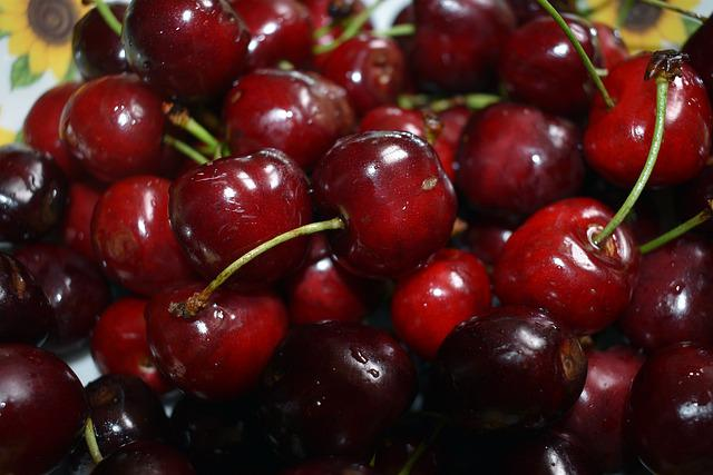Cherries, Cherry, Fruit, Feather, Nature, Eating