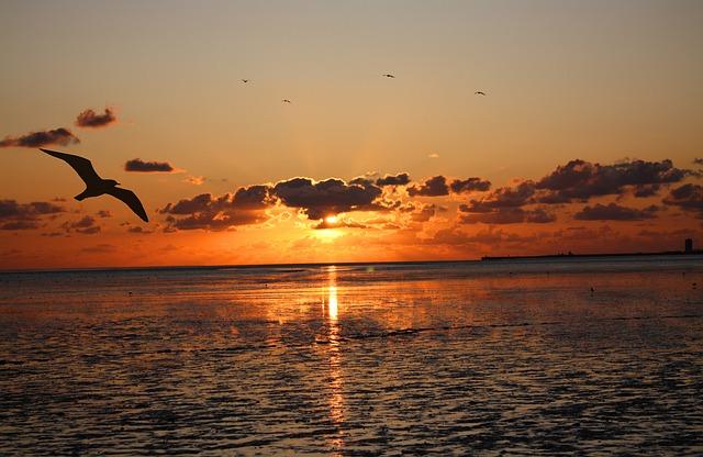 Sunset, Wadden Sea, Watts, Ebb, Abendstimmung