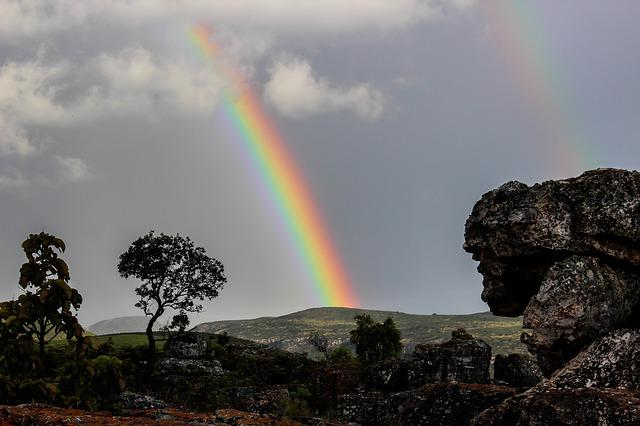 Rainbow, Nature, Africa, Ecological, Blue, Woods, Life