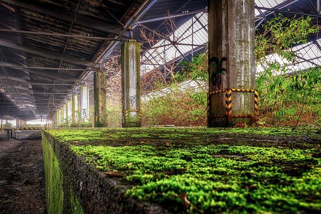 Lost Places, Railway Station, Platform, Edge, Moss