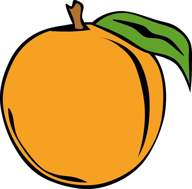 Orange, Fruit, Edible, Food, Delicious, Sweet, Dessert