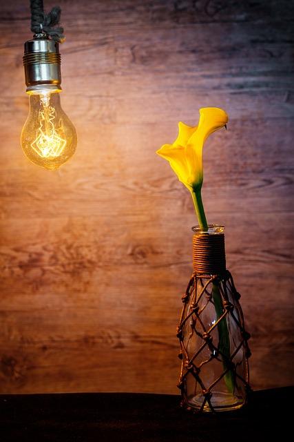 Light Bulb, Bulbs, Edison, Edison Lamp, Calla