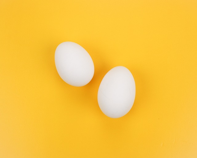 Egg, Yellow, A Surname Eggs