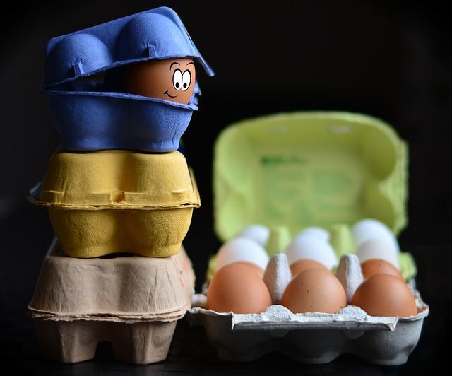 Egg Cartons, Egg, Egg Box, Egg Packaging, Bio