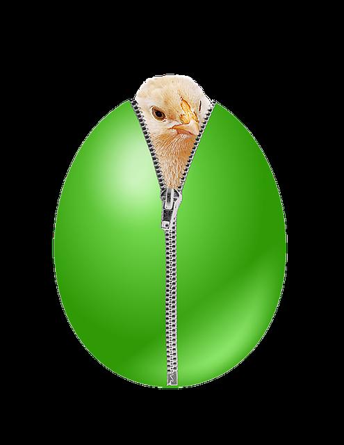 Egg, Chicks, Chicken, Eggshell, Easter Egg, Easter