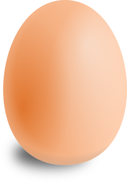 Egg, Oval, Food, Round