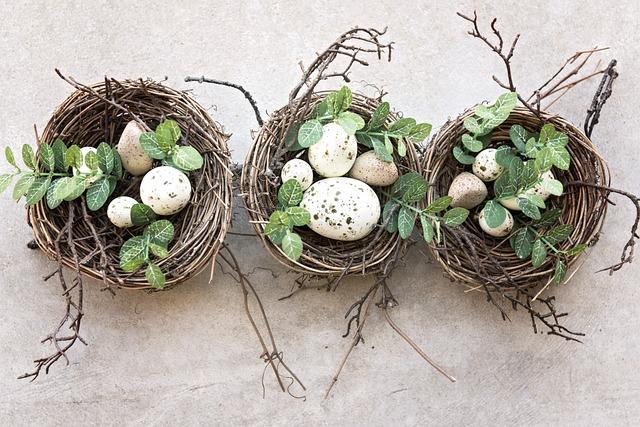 Bird's Nest, Eggs, Bird, Nests, Breeding