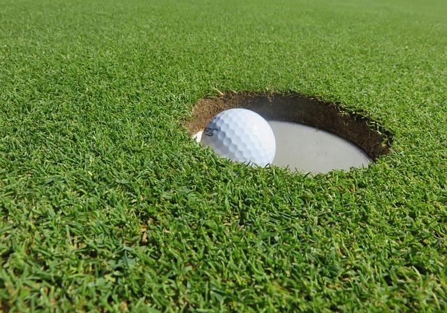 Golf Ball, Golf, Eingelocht, Ball, Putting-green, Putt