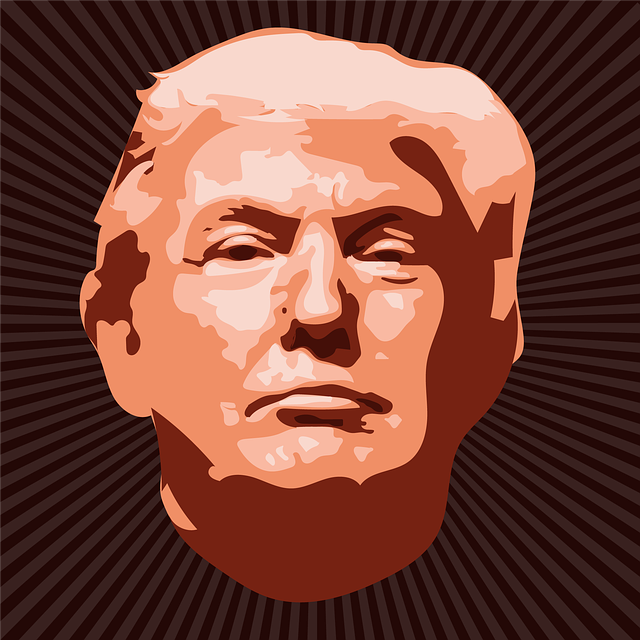 Donald Trump, Politician, America, Donald, Election
