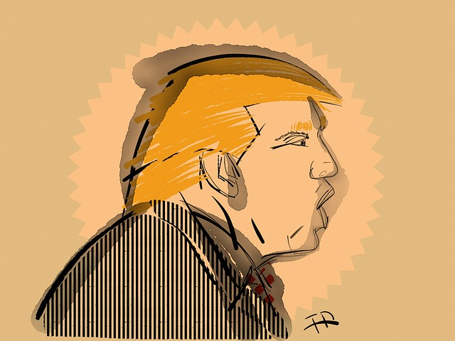 Trump, Usa, America, Elections, Peres Ident, Donald