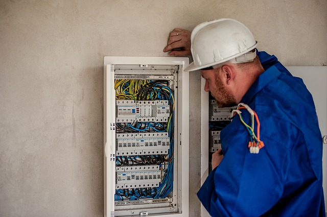 Electrician, Electric, Electricity, Worker, Building