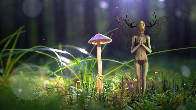 Fantasy, Forest, Elf, Light, Blade Of Grass, Mystical