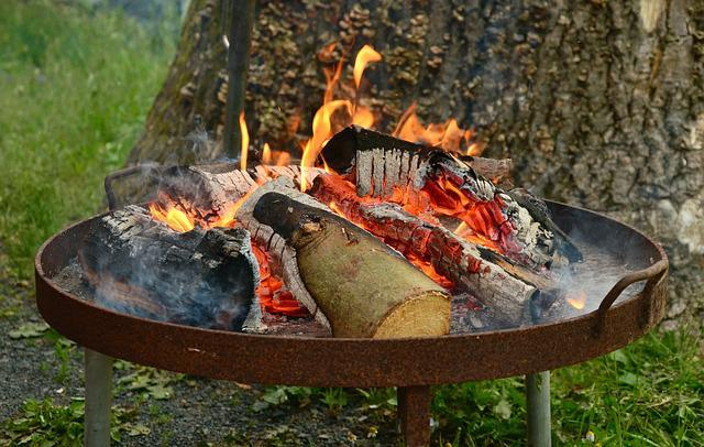 Fire, Barbecue, Fire Bowl, Embers, Grill, Burn, Flame