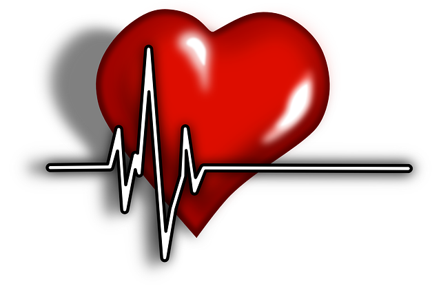 Cardiac, Pulse, Systole, Heartbeat, Ecg, Ekg, Emergency