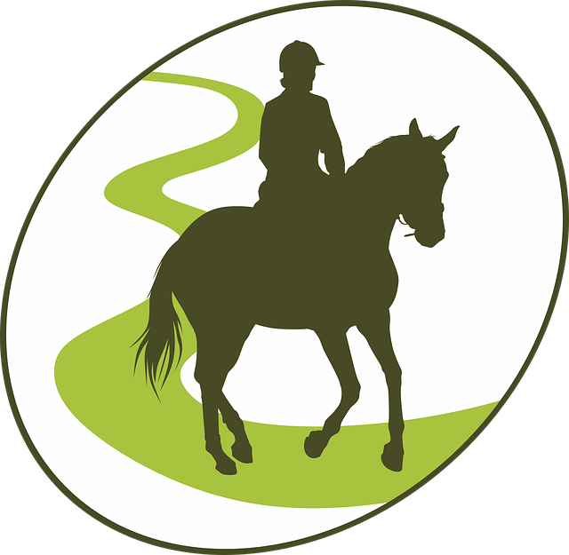 Endurance, Horseback Riding, Horse, Equine, Jumper