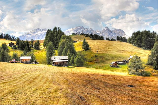 Pralongia, Dolomites, Alm, Nature, Enjoy, Summer