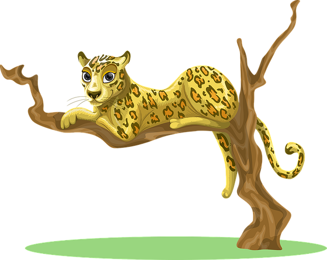 Leopard, Tree, Sitting, Jungle, Woods, Environment