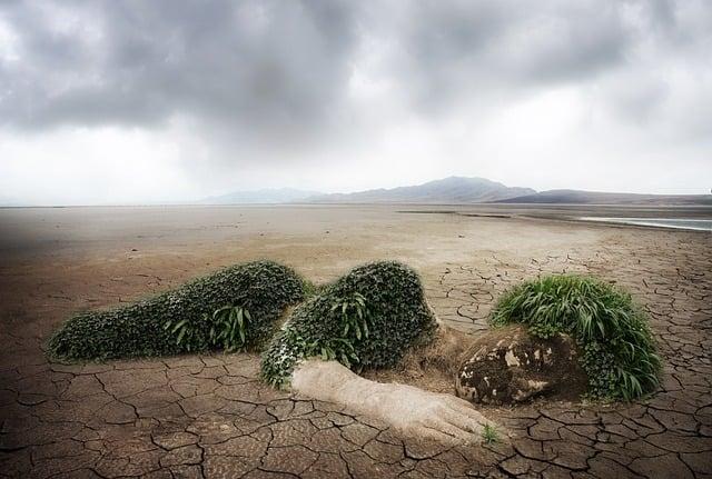 Nature, Environment, Environmental Protection