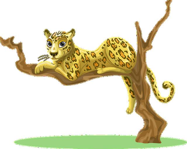 Leopard, Tree, Sitting, Jungle, Woods, Environment