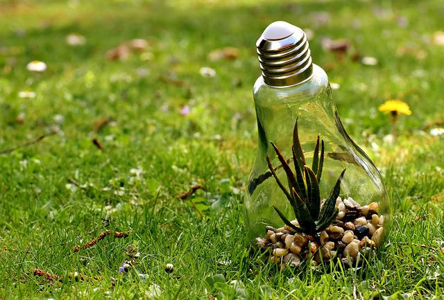 Environmental Protection, Nature, Light Bulb, Energy