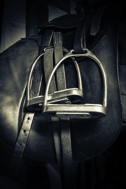 Stirrups, Saddle, Equestrian, Horse, Leather, Sport