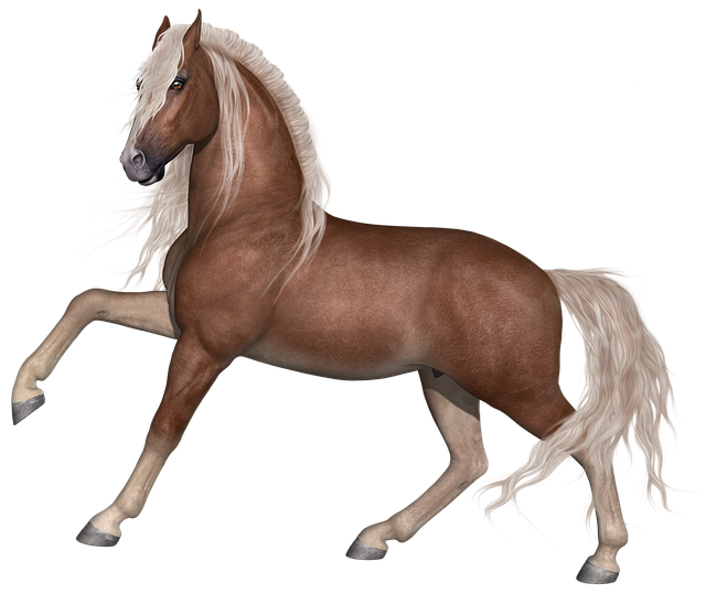 Horse, Stallion, Animal, Farm, Equine, Equestrian, Mane