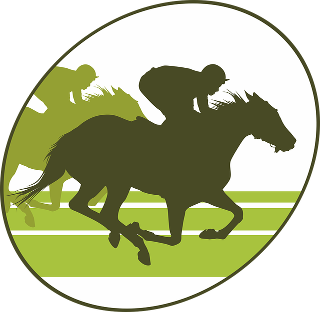 Horse Racing, Horse, Equine, Jumper, Horseback Riding