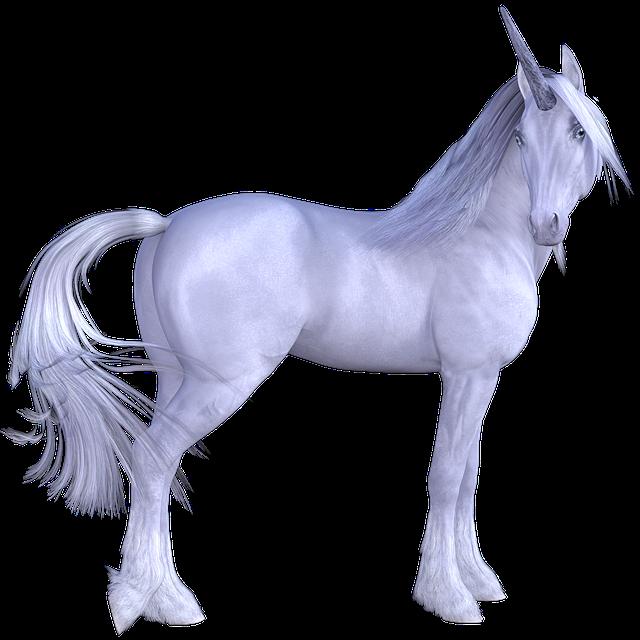 Animal, Horse, Equine, Mammal, Pets