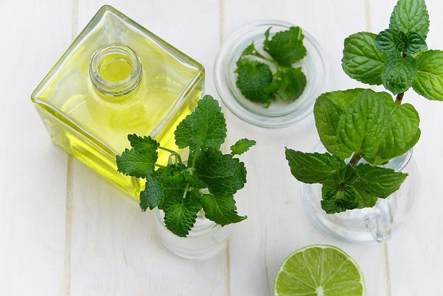 Leaf, Mint, Herb, Healthy, Food, Oil, Essential Oils