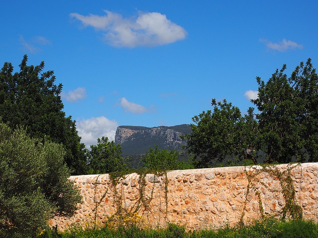 Mountains, Estate Raixa, Mallorca
