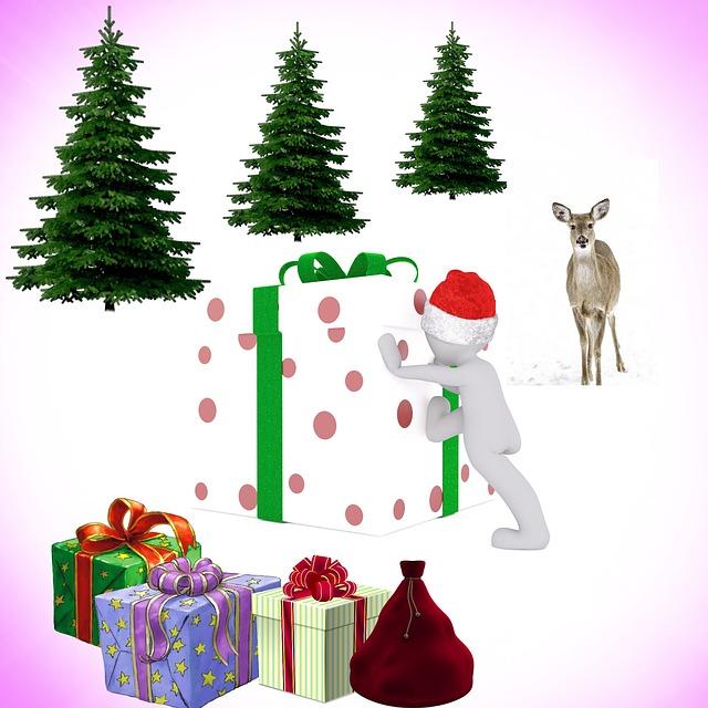 Christmas, Festival, Merry Christmas, Fir, Gifts, Eve
