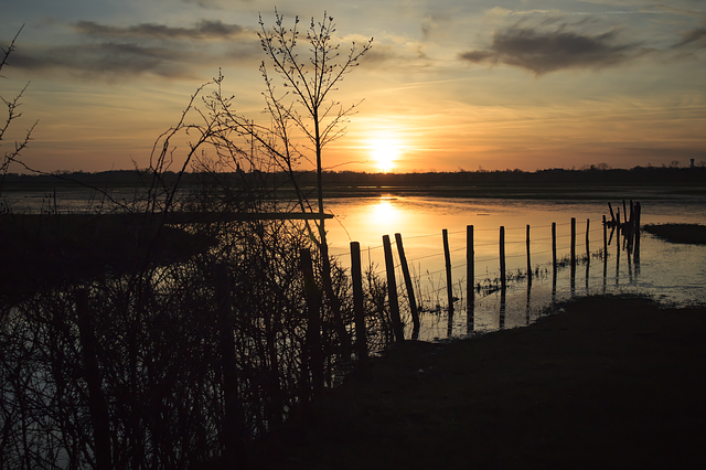Sunset, Marsh, Body Of Water, Reflection, Evening