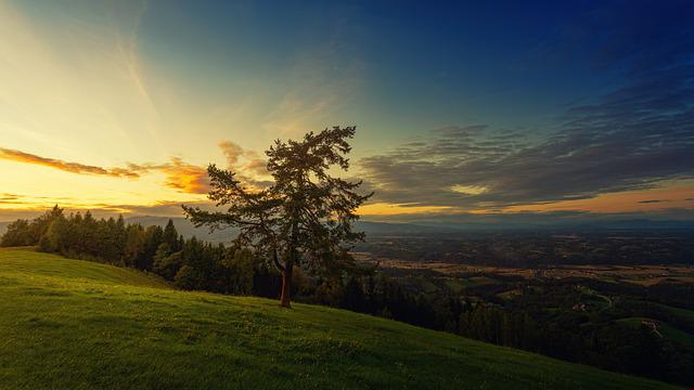 Evening, Outlook, Tree, Rest, Slovenia, Panorama, Dusk