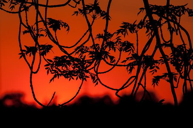 Sunset, Evening Sky, Abendstimmung