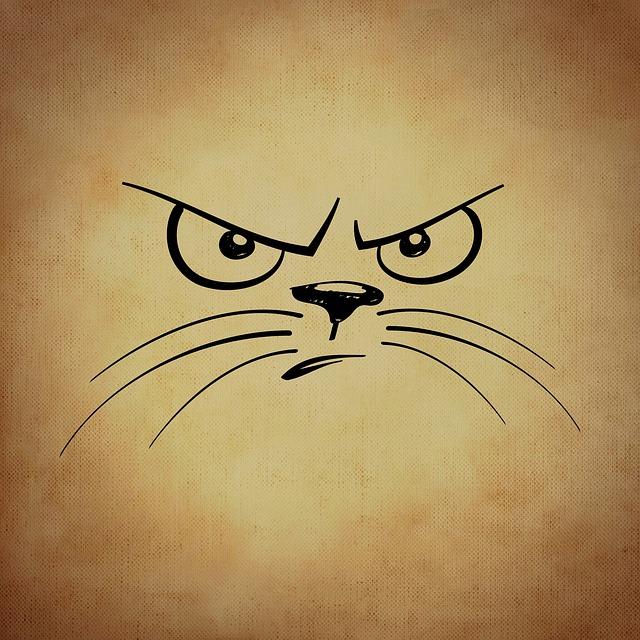 Smiley, Emoticon, Cat, Evil, Funny