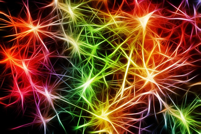Nerves, Cells, Star, Dendrites Sepia, Excitation, Brain
