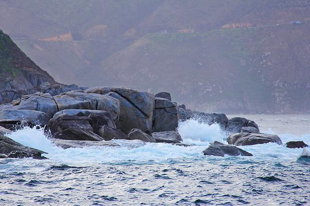 Seal, Island, Thousands, Rocks, Amazing, Exciting, Cute