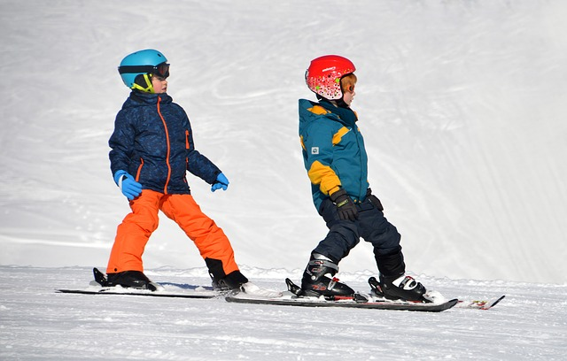 Children, Ski Lessons, Exercise Hills, Black Forest