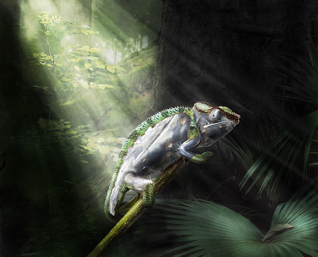 Composing, Cameleon, Fantasy, Photoshop, Forest, Exotic