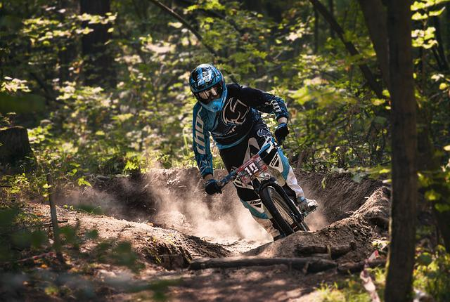 Sports, Downhill, Cycling, Competition, Extreme, Forest