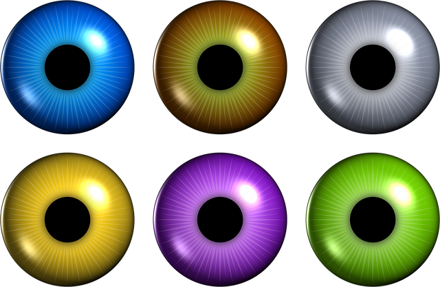 Eye, Iris, Pupil, Retina, Pack, Set, Assortment