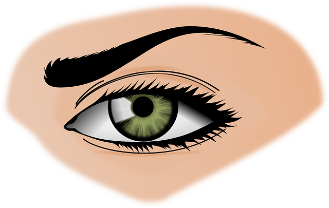 Iris, Eye, Eyebrows, Female, Green, Eye Shadow
